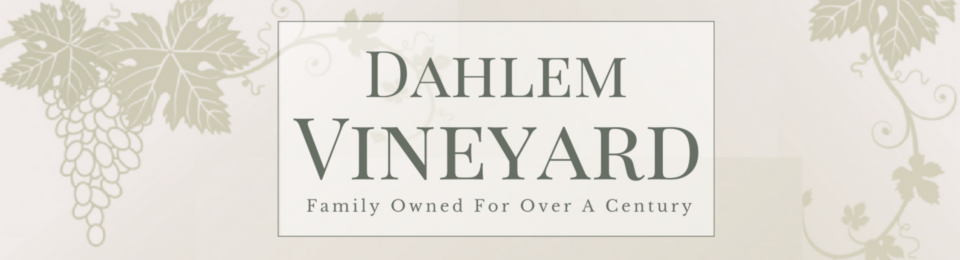 Dahlem Vineyard